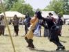 Fencing-6-JC-01